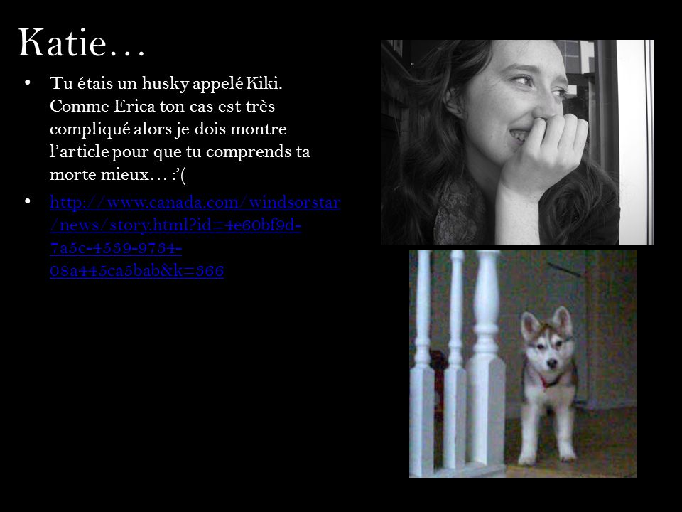 Katie… Tu étais un husky appelé Kiki. Comme Erica ton cas est très compliqué alors je dois montre l'article pour que tu comprends ta morte mieux… :'(