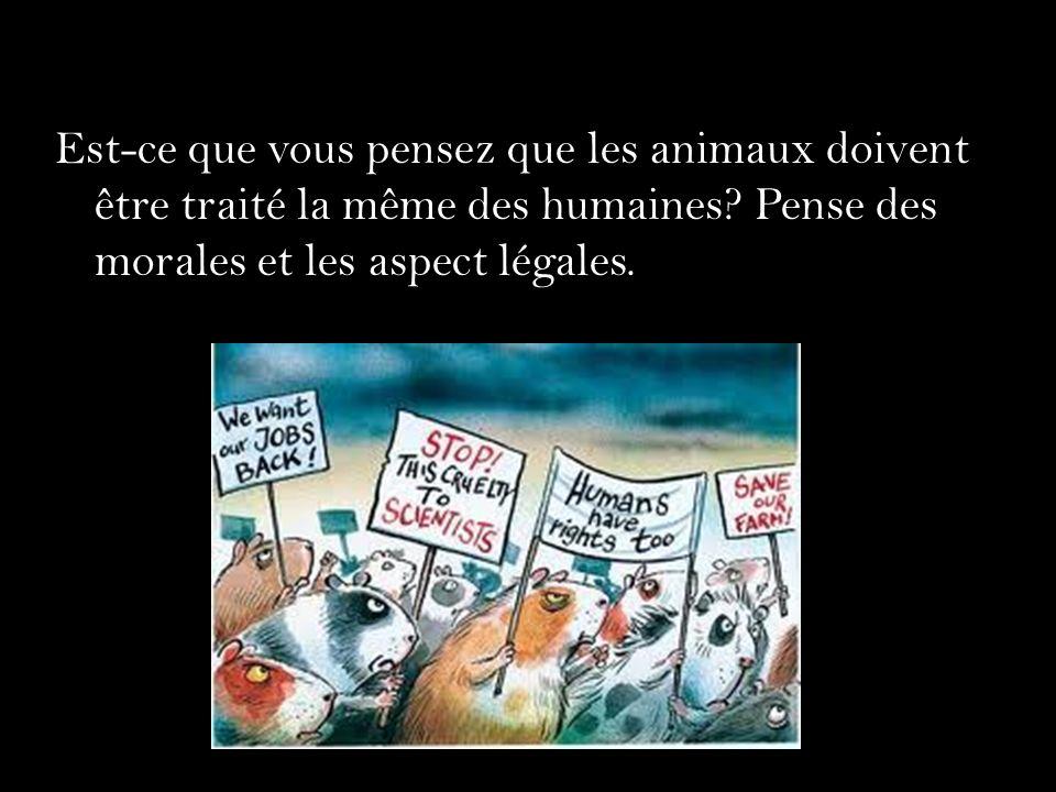 Est-ce que vous pensez que les animaux doivent être traité la même des humaines.