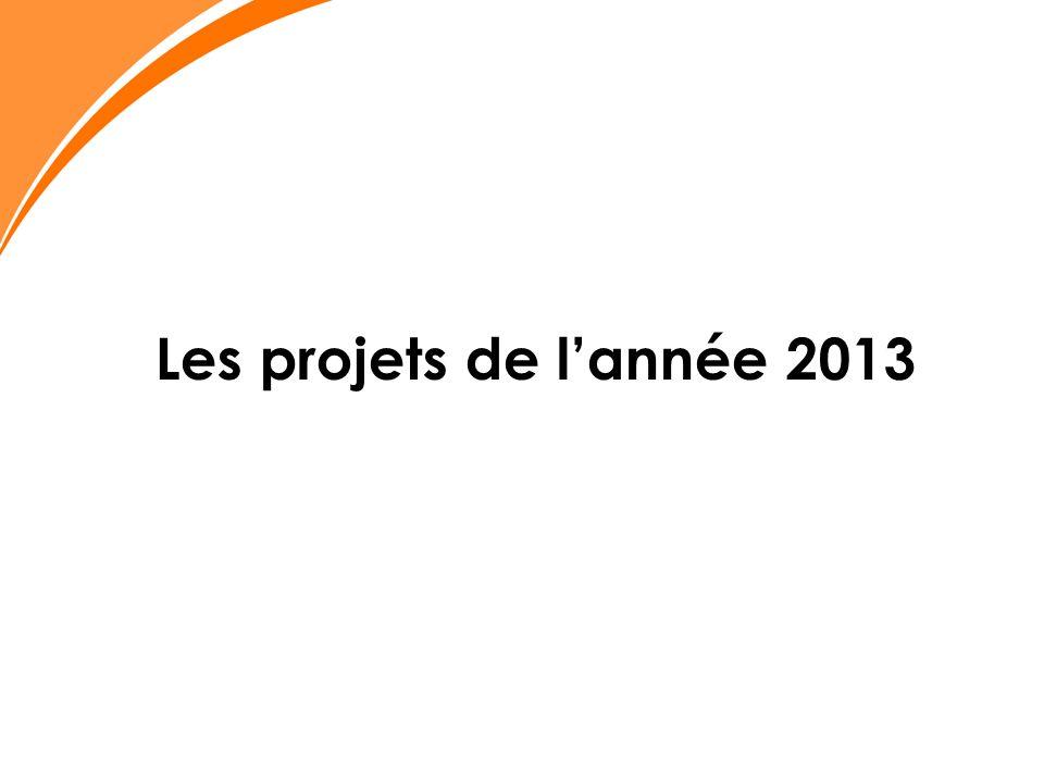 Les projets de l'année 2013