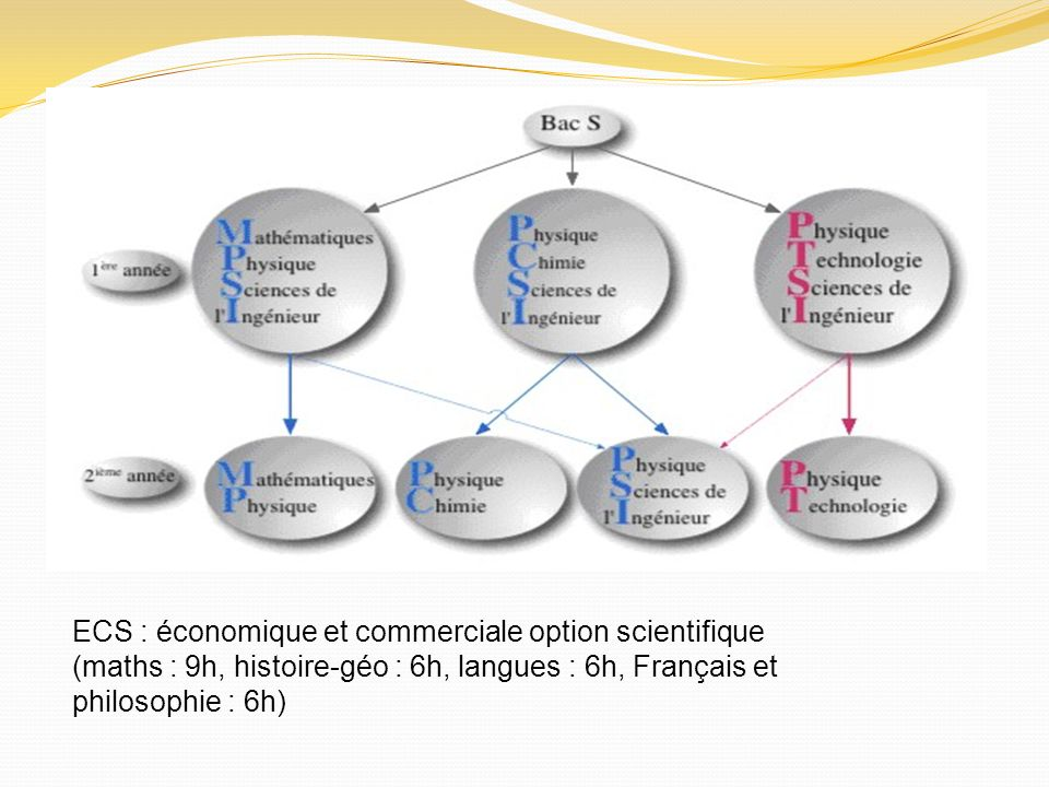 ECS : économique et commerciale option scientifique