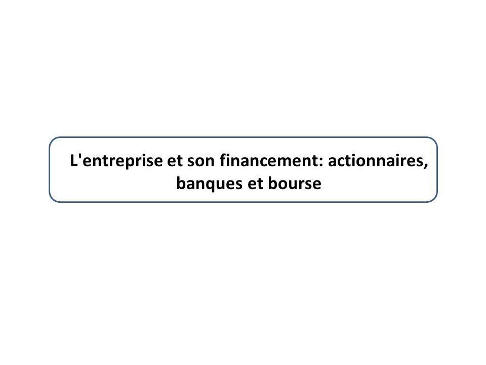 L entreprise et son financement: actionnaires, banques et bourse