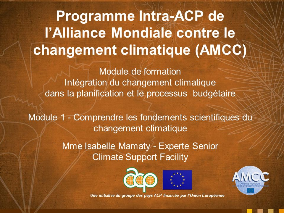 Programme Intra-ACP de