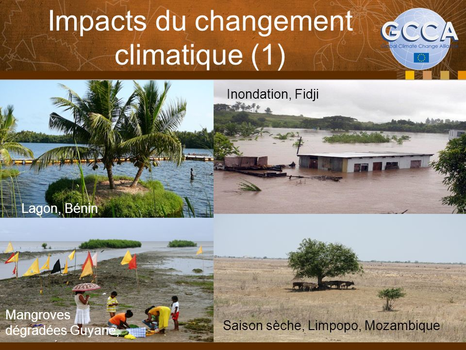 Impacts du changement climatique (1)