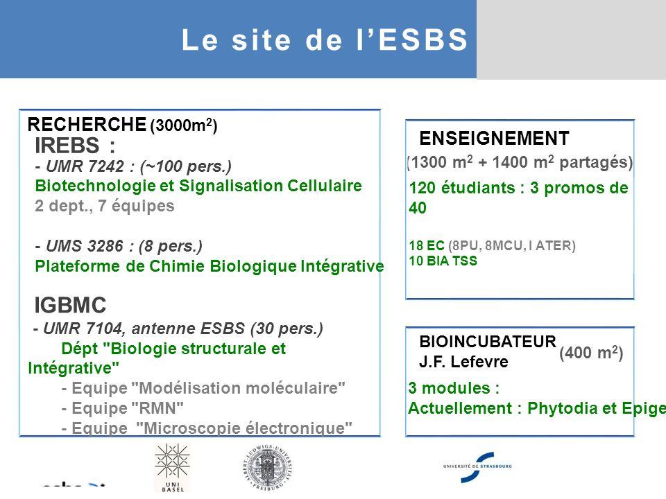 Le site de l'ESBS IREBS : IGBMC RECHERCHE (3000m2) ENSEIGNEMENT