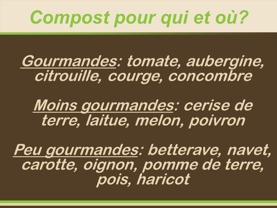 Compost pour qui et où Gourmandes: tomate, aubergine, citrouille, courge, concombre. Moins gourmandes: cerise de terre, laitue, melon, poivron.