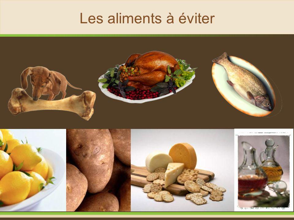 Les aliments à éviter Viandes, Poissons, Os, Produits laitiers