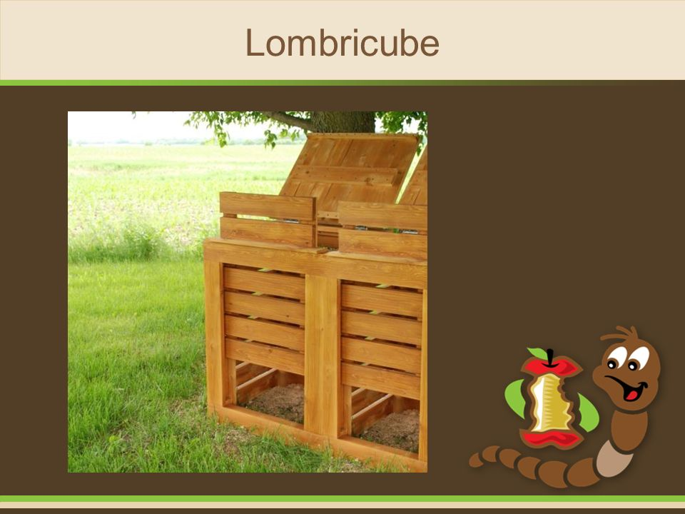Lombricube 19