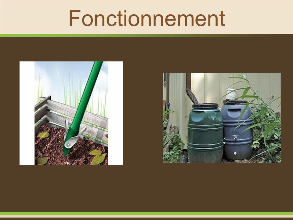 Fonctionnement Température idéale; Types d'aliments; Alimentation maximale par semaine; Coquilles d'oeufs ou chaux dolomitique chaque semaine.