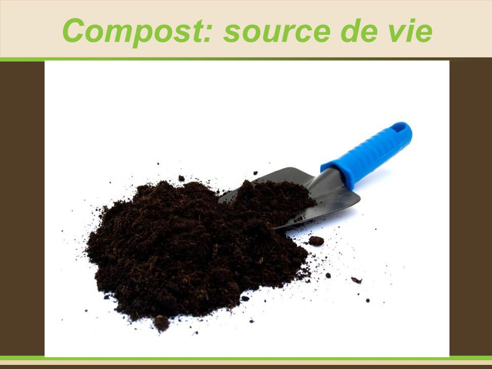 Compost: source de vie 9
