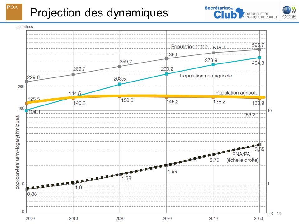 Projection des dynamiques