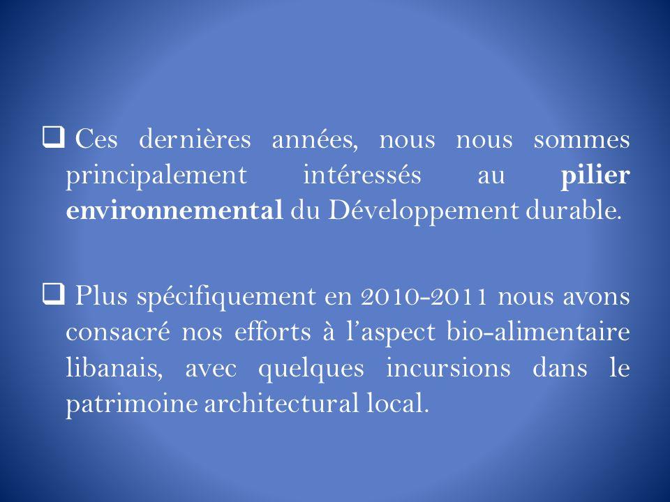 Ces dernières années, nous nous sommes principalement intéressés au pilier environnemental du Développement durable.