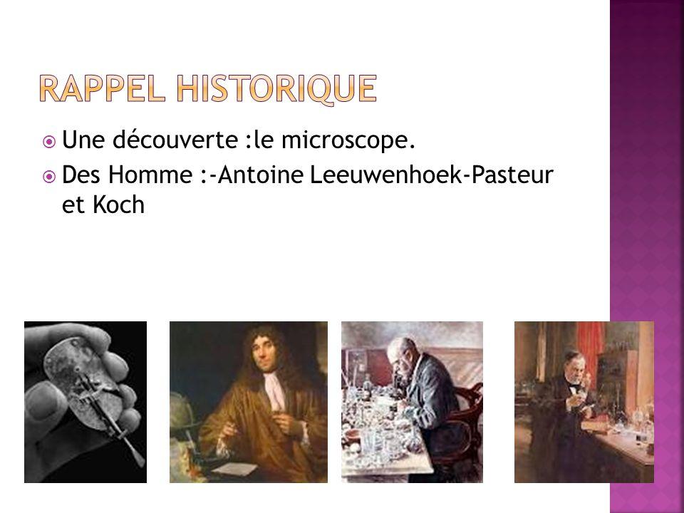 Rappel historique Une découverte :le microscope.