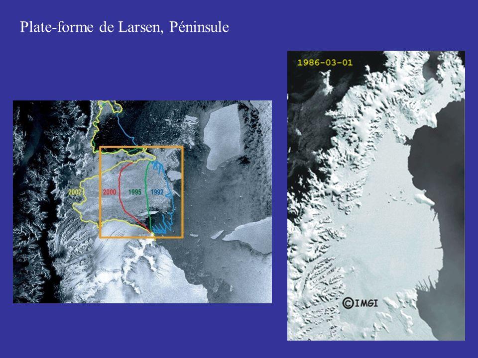 Plate-forme de Larsen, Péninsule