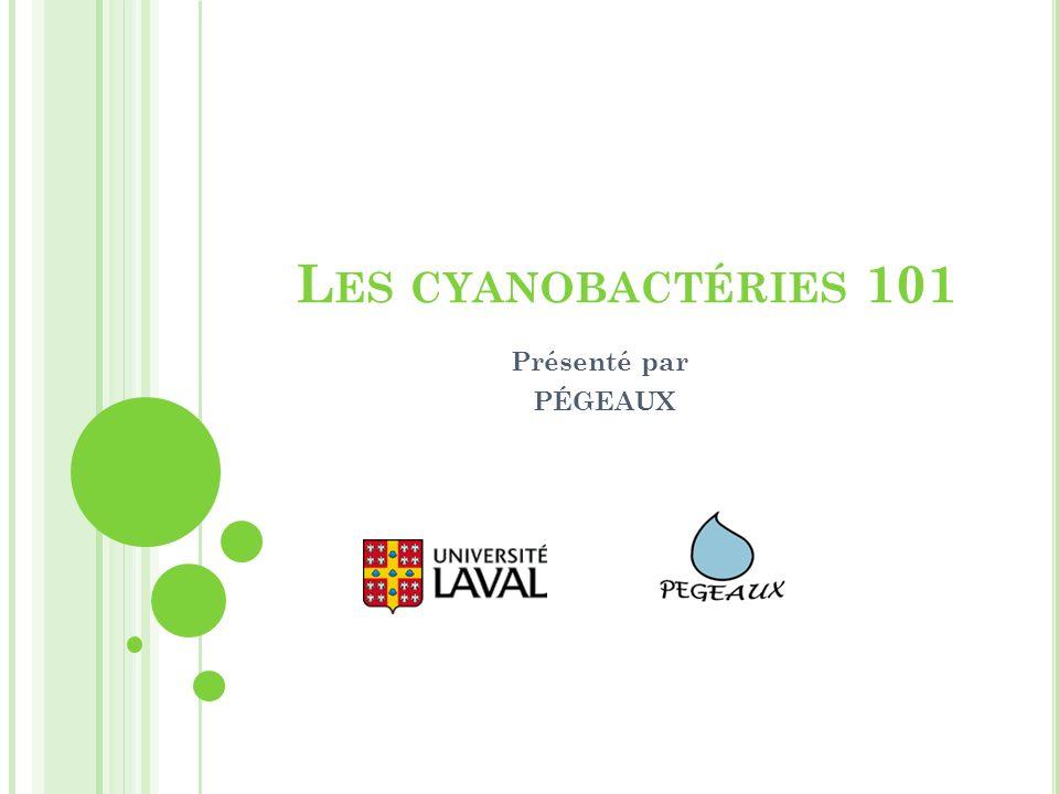 Les cyanobactéries 101 Présenté par PÉGEAUX