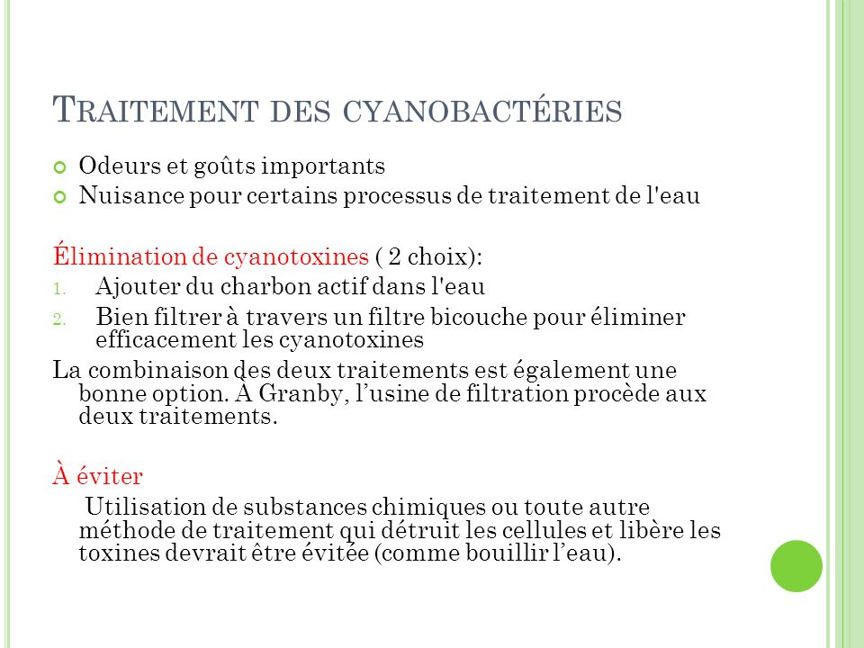 Traitement des cyanobactéries