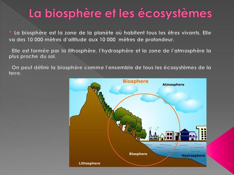 La biosphère et les écosystèmes
