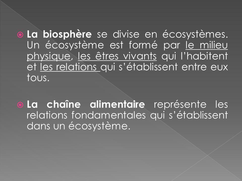 La biosphère se divise en écosystèmes