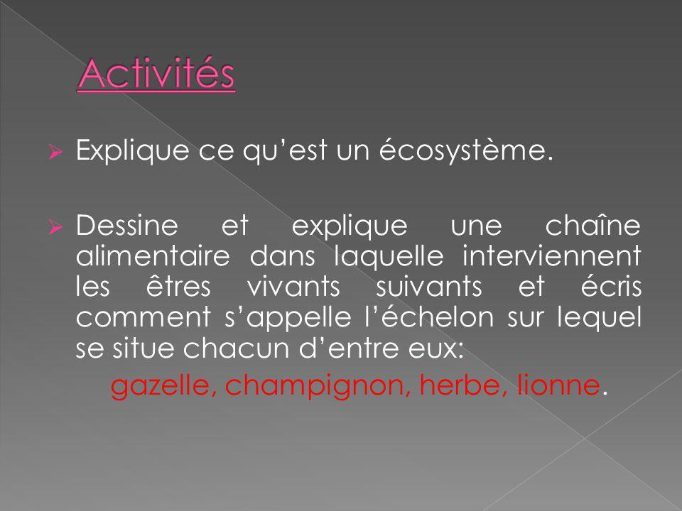 Activités Explique ce qu'est un écosystème.