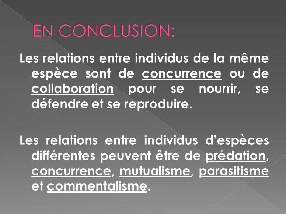 EN CONCLUSION:
