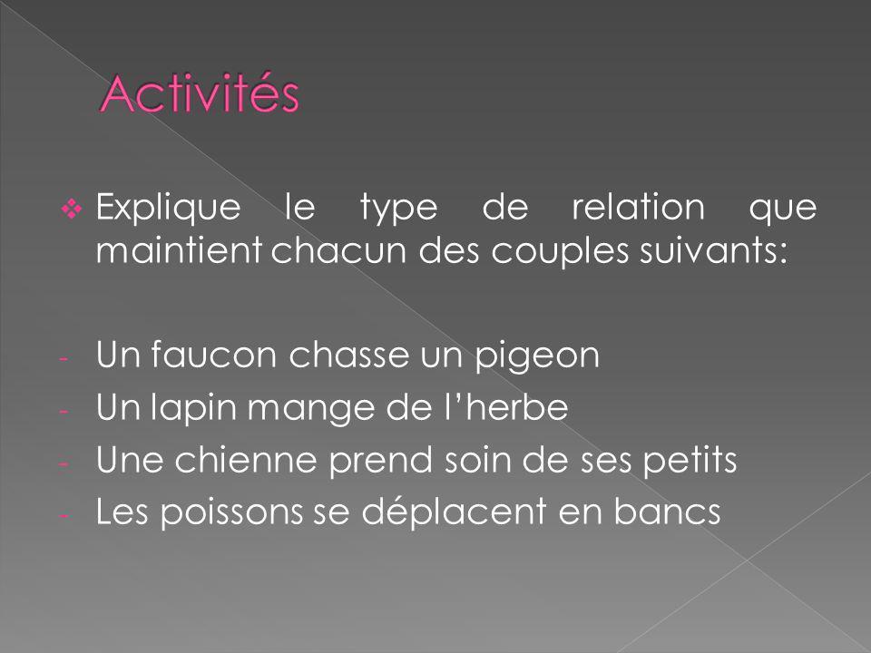 Activités Explique le type de relation que maintient chacun des couples suivants: Un faucon chasse un pigeon.