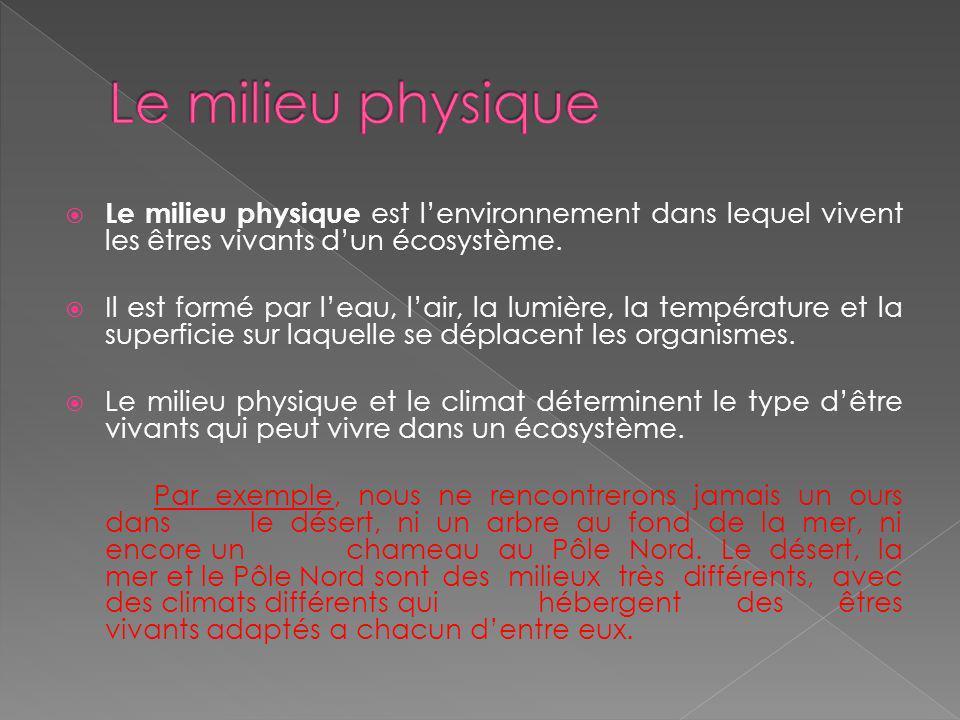 Le milieu physique Le milieu physique est l'environnement dans lequel vivent les êtres vivants d'un écosystème.