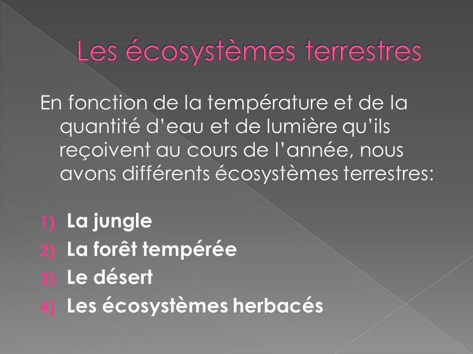 Les écosystèmes terrestres