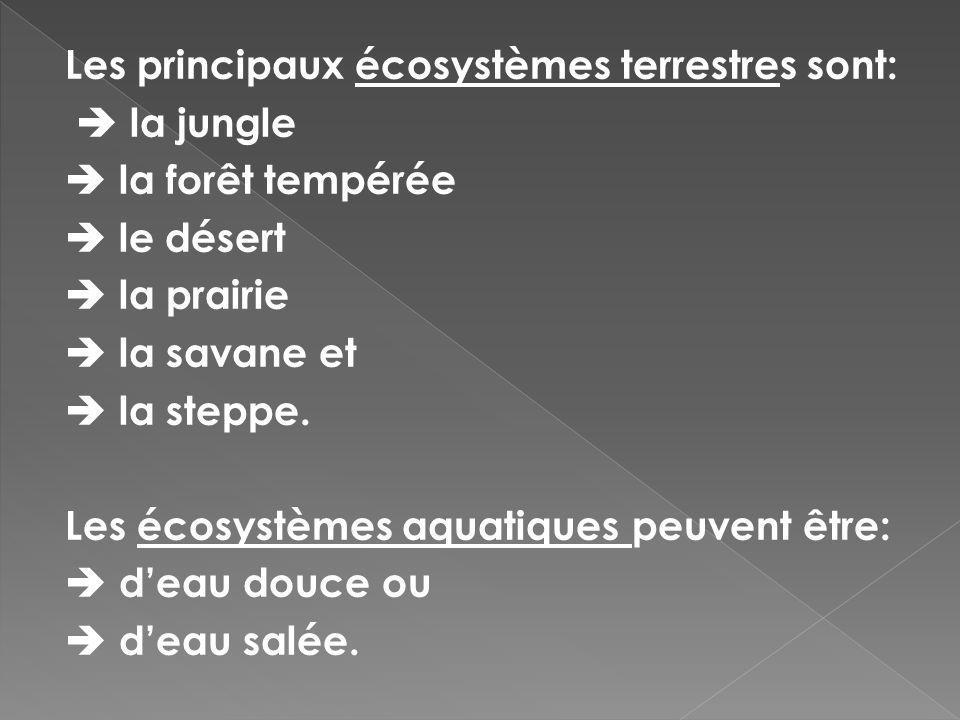 Les principaux écosystèmes terrestres sont:  la jungle  la forêt tempérée  le désert  la prairie  la savane et  la steppe.