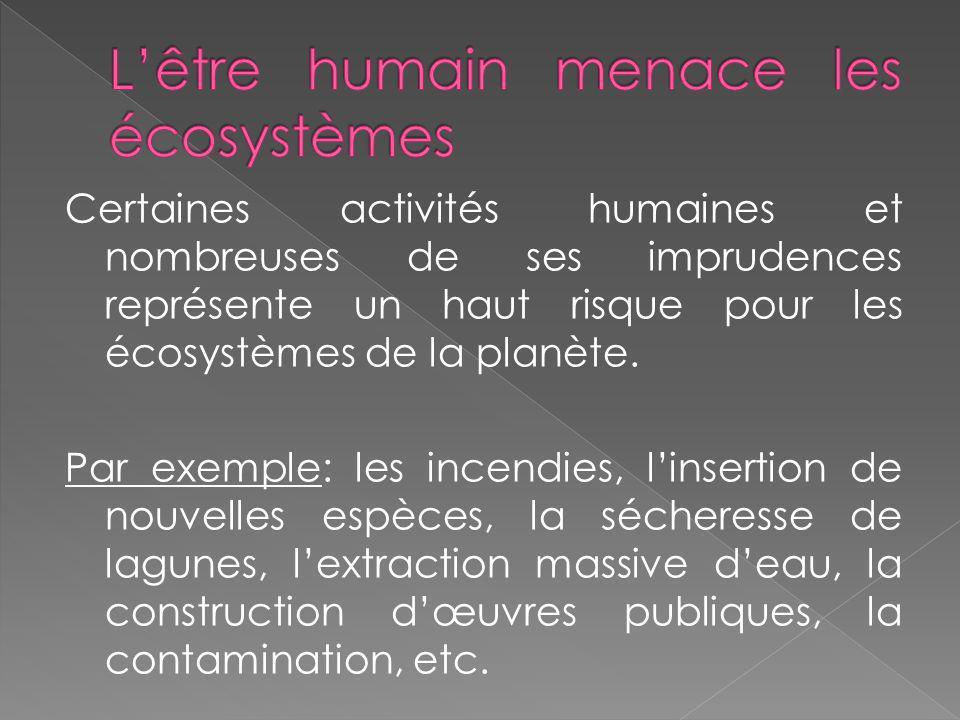 L'être humain menace les écosystèmes