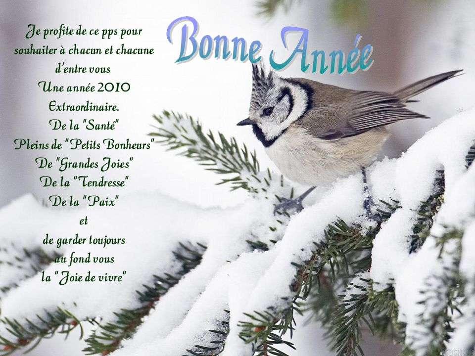 Bonne Année Je profite de ce pps pour souhaiter à chacun et chacune