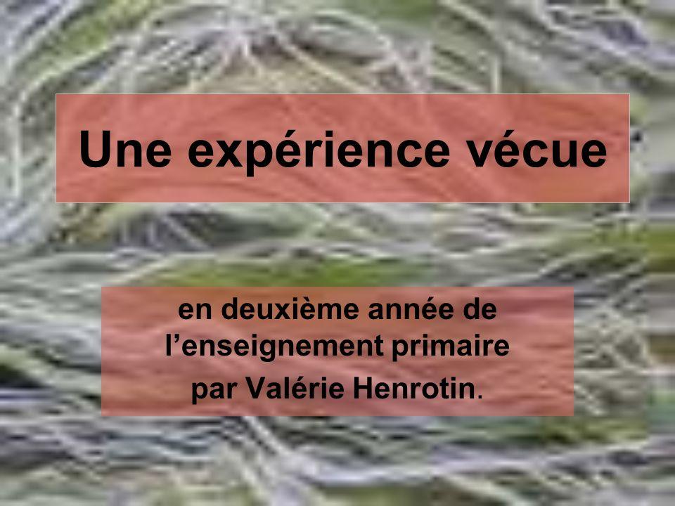 en deuxième année de l'enseignement primaire par Valérie Henrotin.