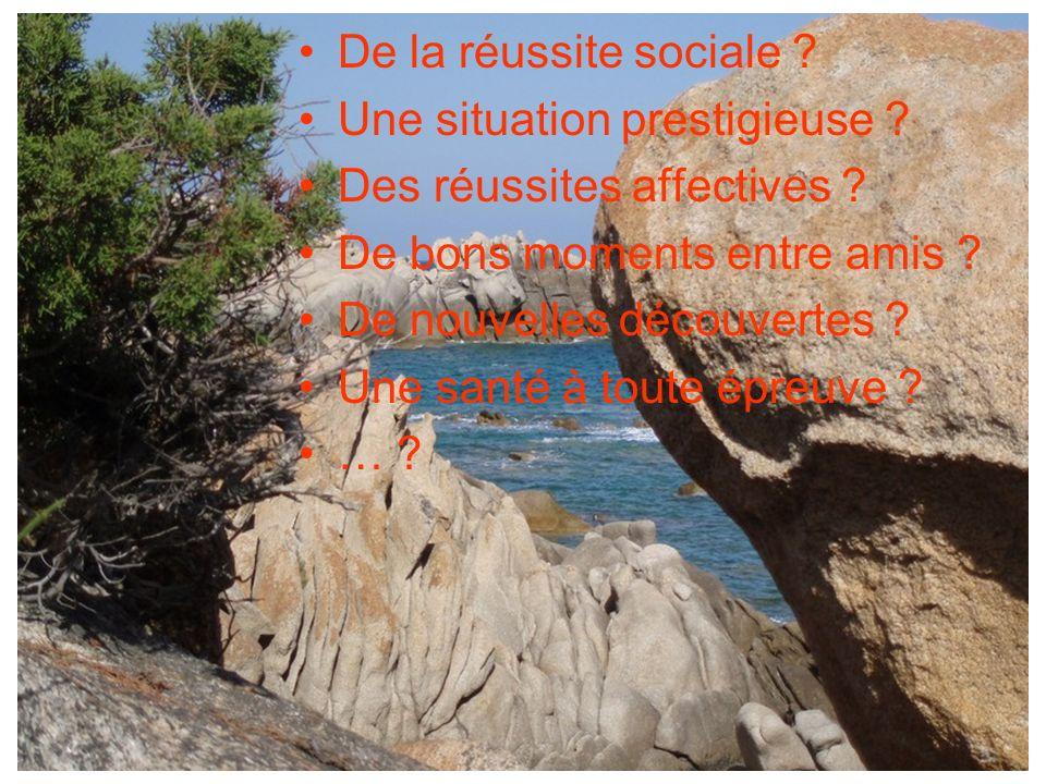 De la réussite sociale Une situation prestigieuse Des réussites affectives De bons moments entre amis