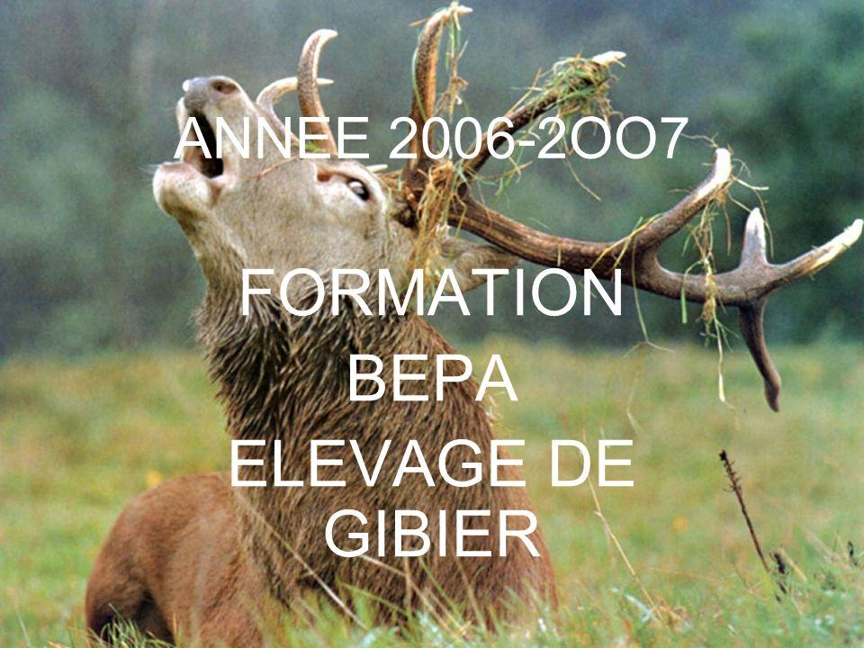 FORMATION BEPA ELEVAGE DE GIBIER