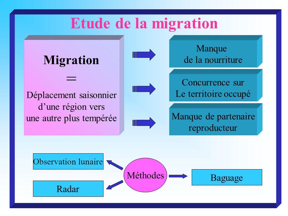 = Etude de la migration Migration Manque de la nourriture