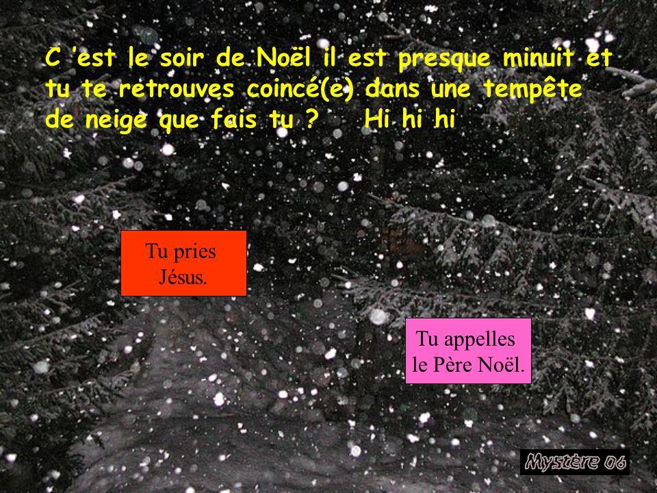 C 'est le soir de Noël il est presque minuit et tu te retrouves coincé(e) dans une tempête de neige que fais tu Hi hi hi