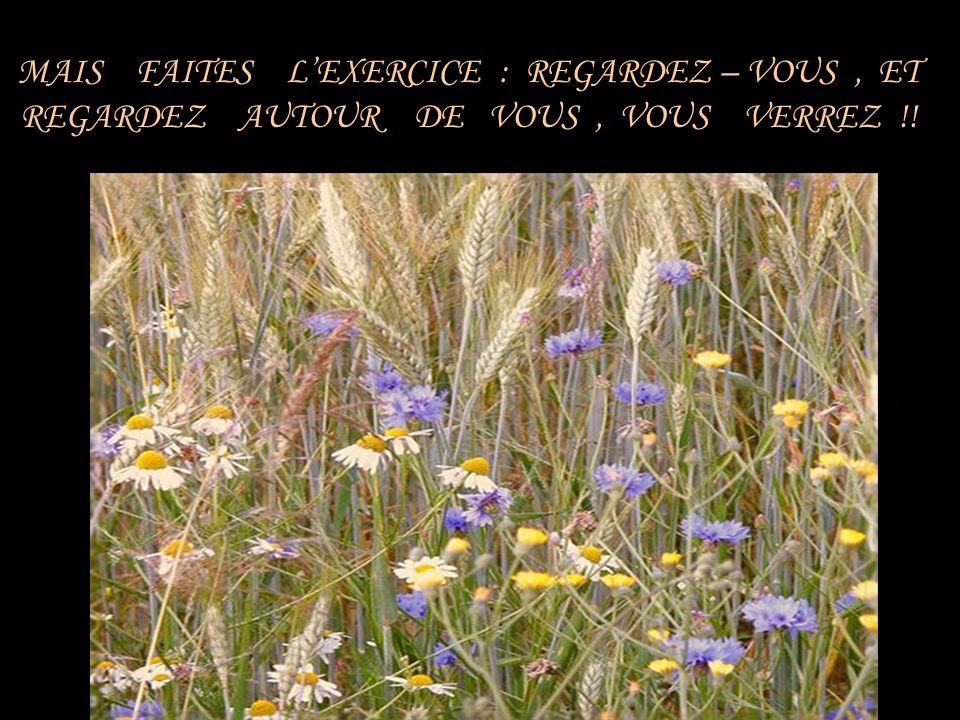 MAIS FAITES L'EXERCICE : REGARDEZ – VOUS , ET REGARDEZ AUTOUR DE VOUS , VOUS VERREZ !!