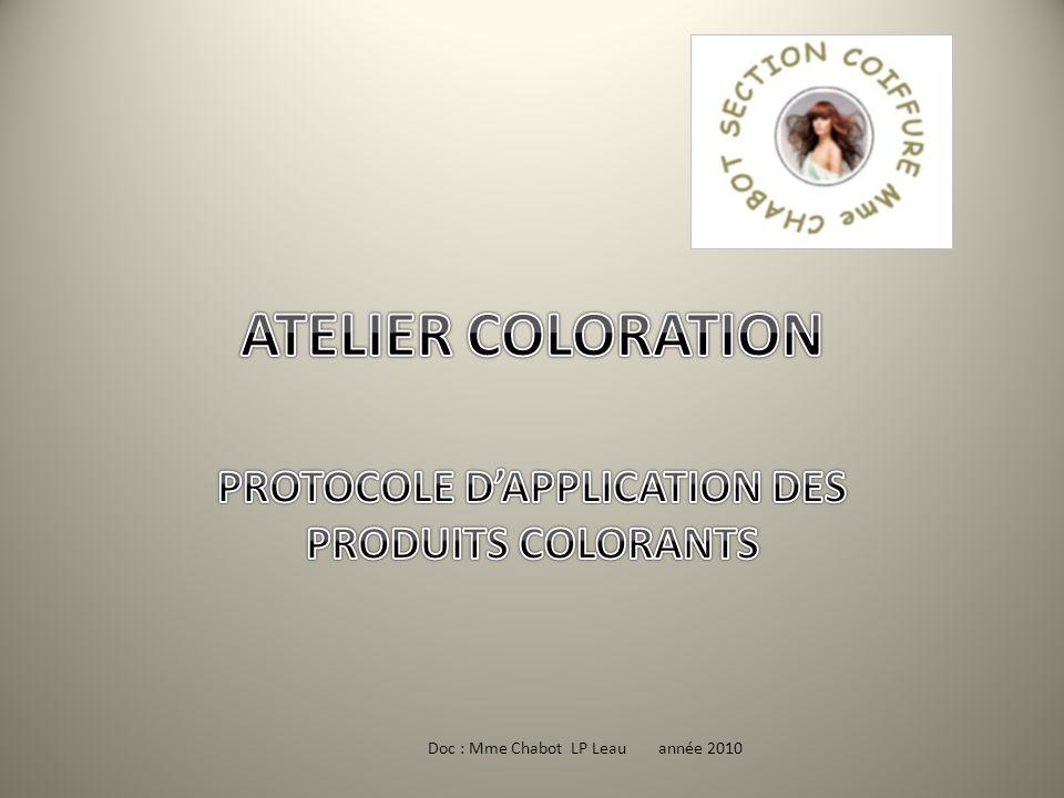 PROTOCOLE D'APPLICATION DES PRODUITS COLORANTS