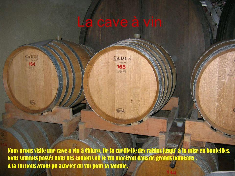 La cave à vin Nous avons visité une cave à vin à Chiuro. De la cueillette des raisins jusqu' à la mise en bouteilles.