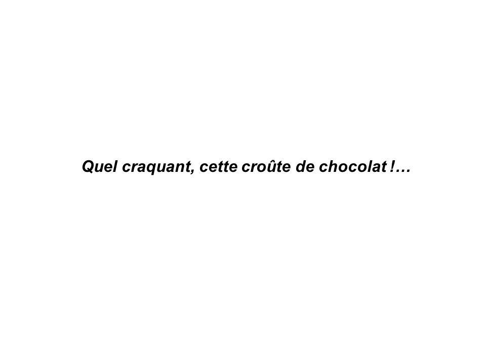 Quel craquant, cette croûte de chocolat !…