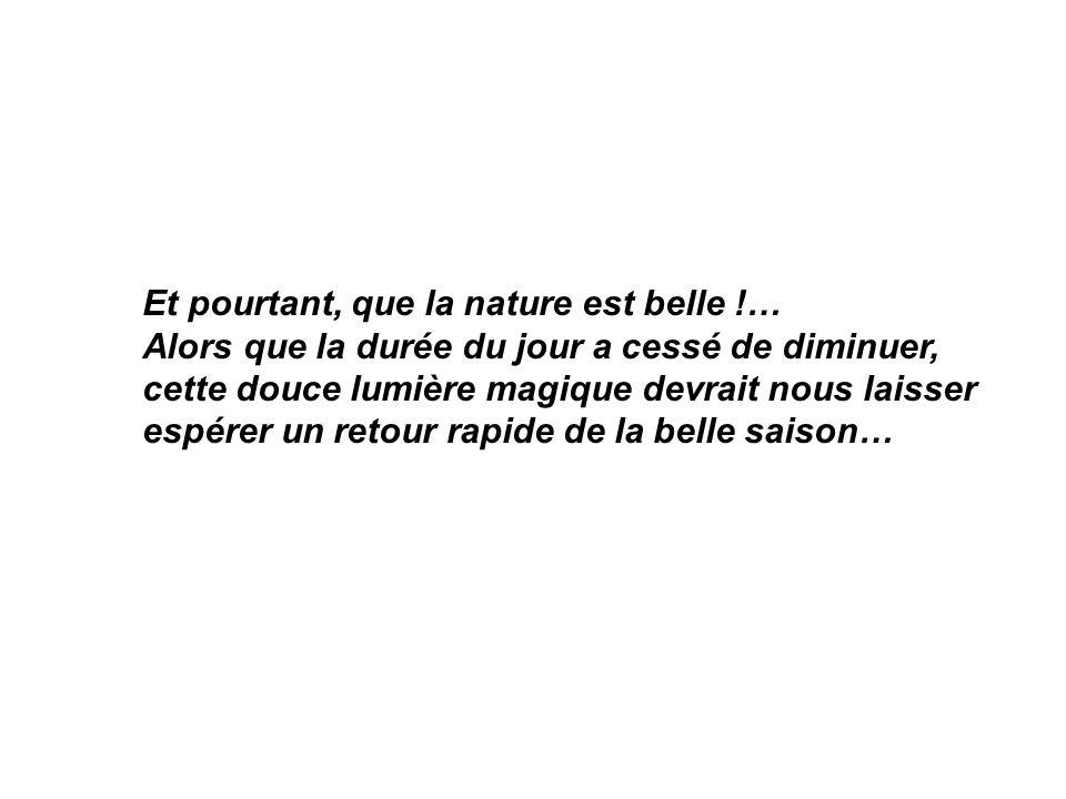 Et pourtant, que la nature est belle !…