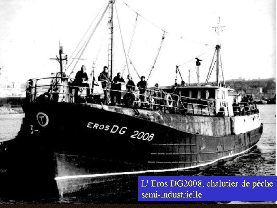 L Eros DG2008, chalutier de pêche semi-industrielle