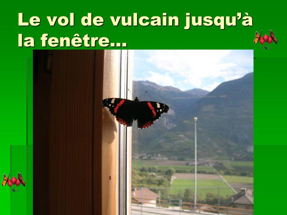 Le vol de vulcain jusqu'à la fenêtre…