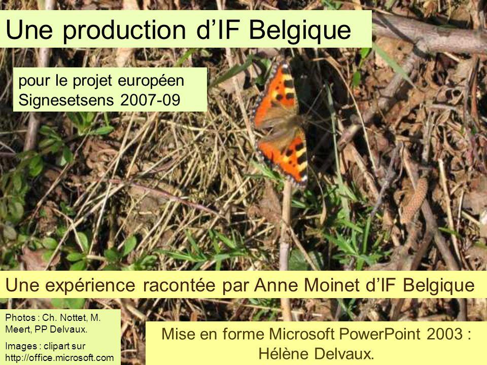 Mise en forme Microsoft PowerPoint 2003 : Hélène Delvaux.