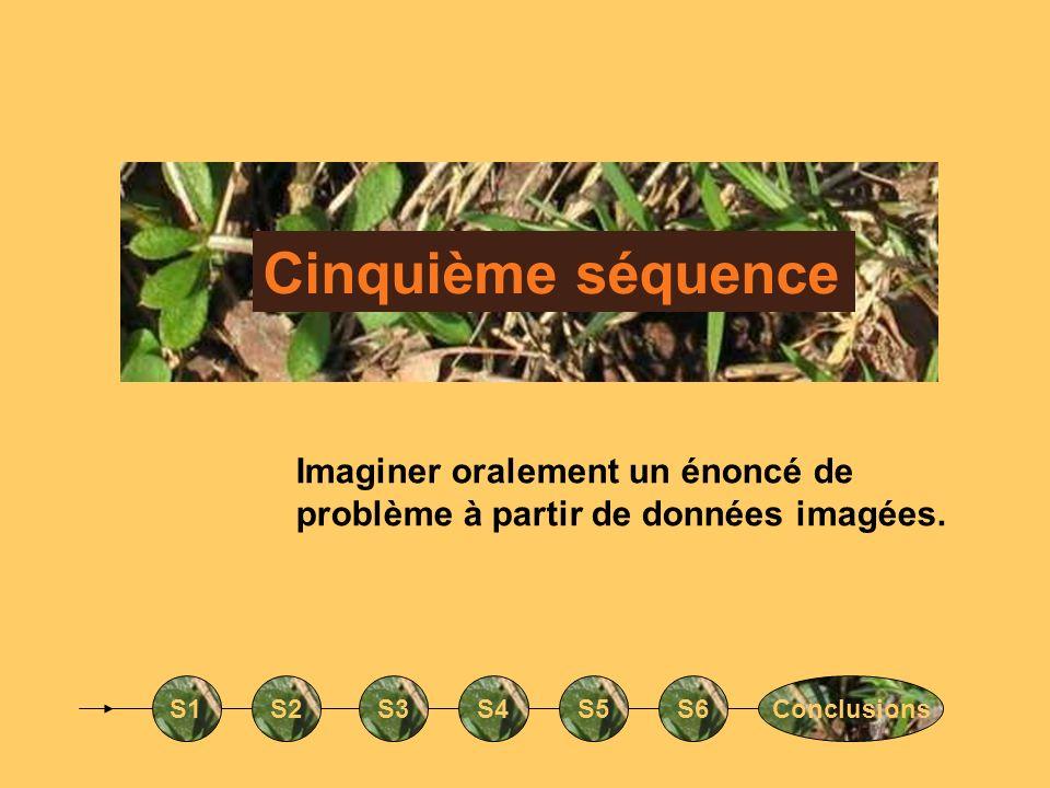 Cinquième séquence Imaginer oralement un énoncé de problème à partir de données imagées. S1. S2. S3.