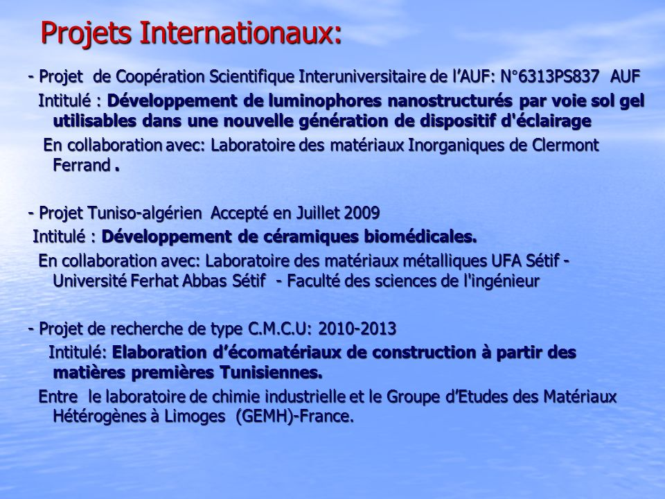 Projets Internationaux: