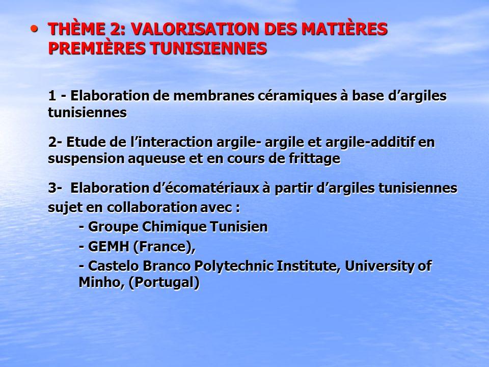 THÈME 2: VALORISATION DES MATIÈRES PREMIÈRES TUNISIENNES