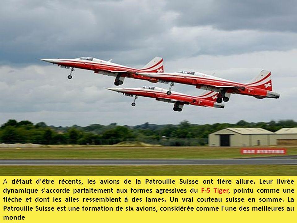 A défaut d être récents, les avions de la Patrouille Suisse ont fière allure.