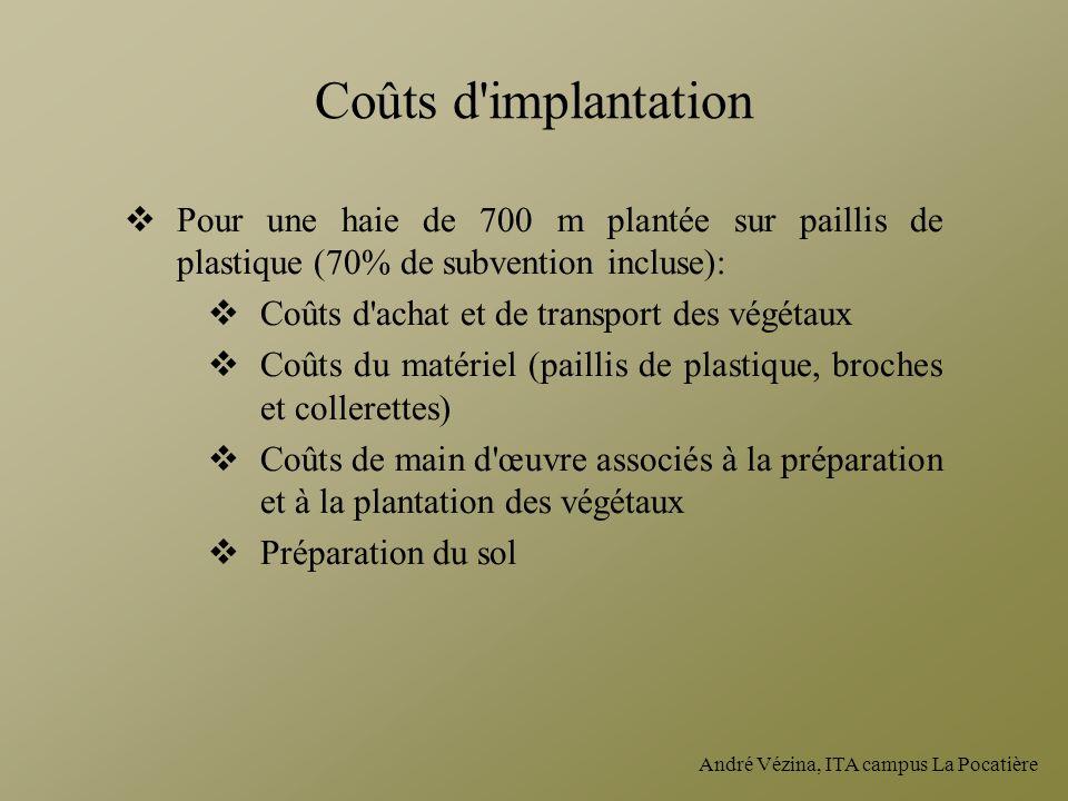 Coûts d implantation Pour une haie de 700 m plantée sur paillis de plastique (70% de subvention incluse):