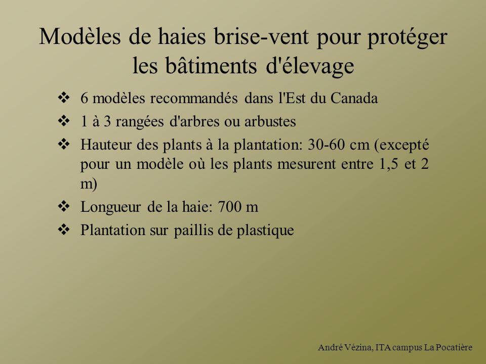 Modèles de haies brise-vent pour protéger les bâtiments d élevage
