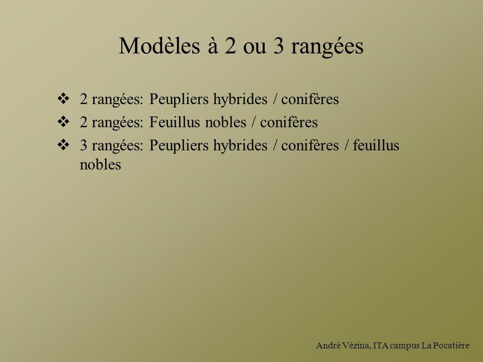 Modèles à 2 ou 3 rangées 2 rangées: Peupliers hybrides / conifères