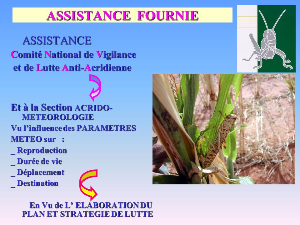 ASSISTANCE FOURNIE ASSISTANCE Comité National de Vigilance